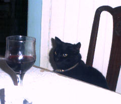 Another glass of wine ?